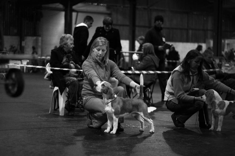 27.12.10 Dog Show-001a.jpg