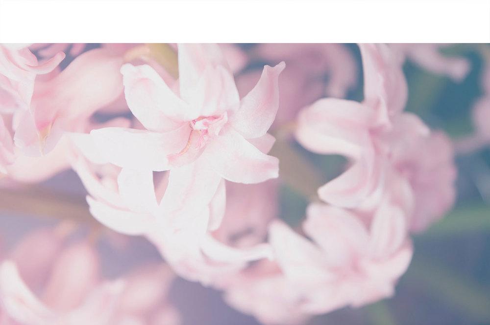 Nature-1.jpg
