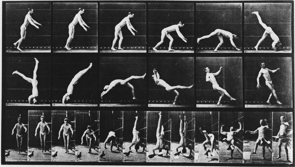 Fig 13. Eadweard Muybridge Motion Studies: Handstand in Motion, pigeon, 1885 available at: http://www.akg-images.co.uk/Docs/AKG/Media/TR5/a/e/5/9/AKG71352.jpg accessed 03/04/16