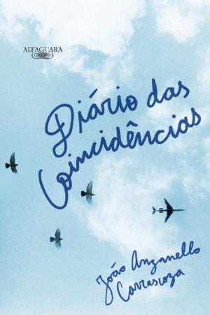 Image result for Diário das Coincidências de João Anzanello Carrascoza