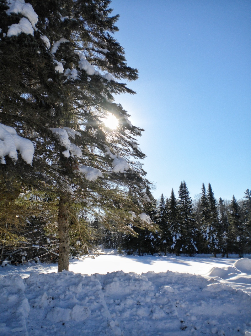 Winter days full of sunshine, albeit sub-zero temps