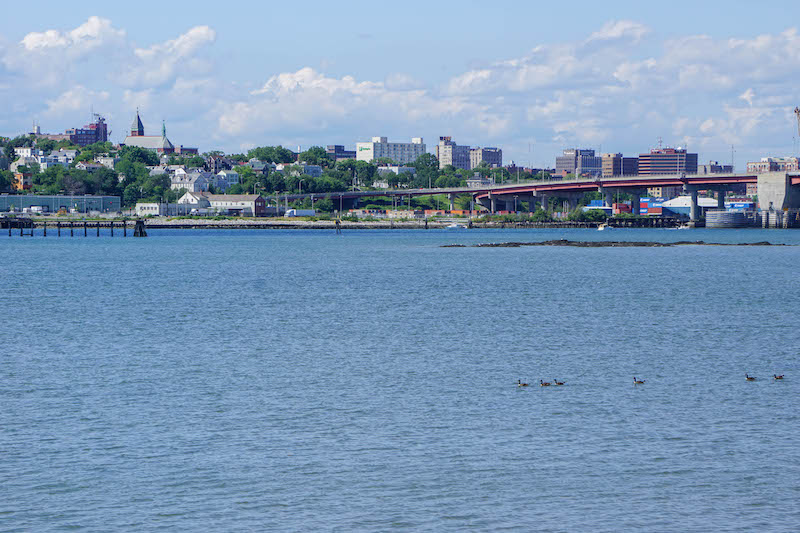 Sunny days spent along the water of Casco Bay