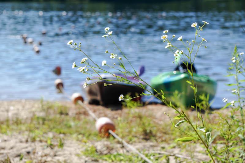 The abundance of kayaking adventures this summer. Summer, please don't go!