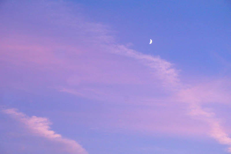 Cotton candy skies and the smallest sliver of a moon