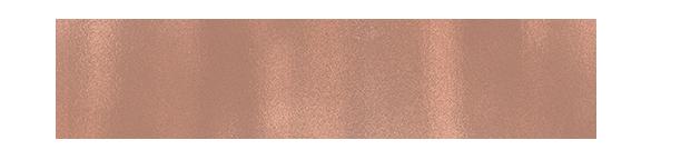 Logo Blush.png