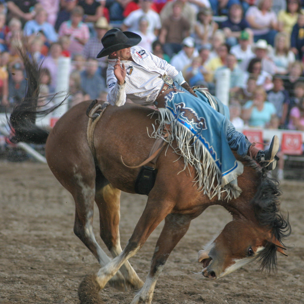 Pioneer Days Rodeo