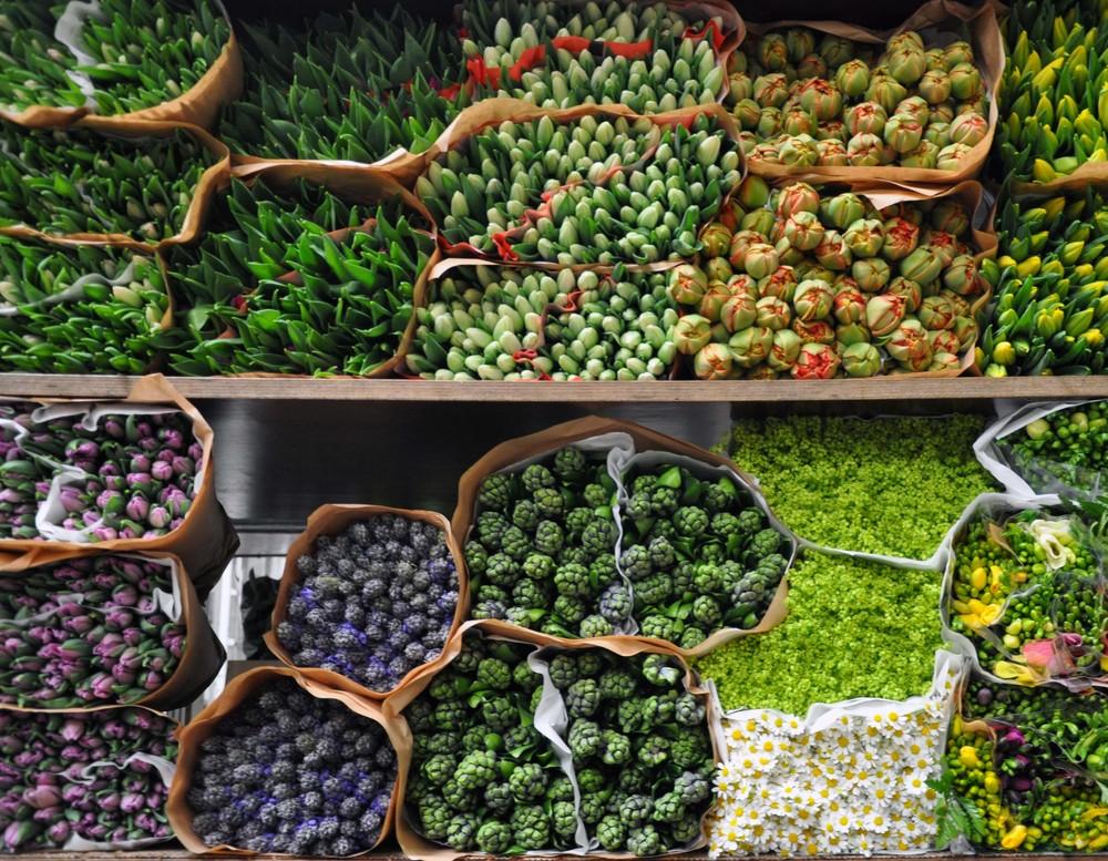 glasgow-florist-market