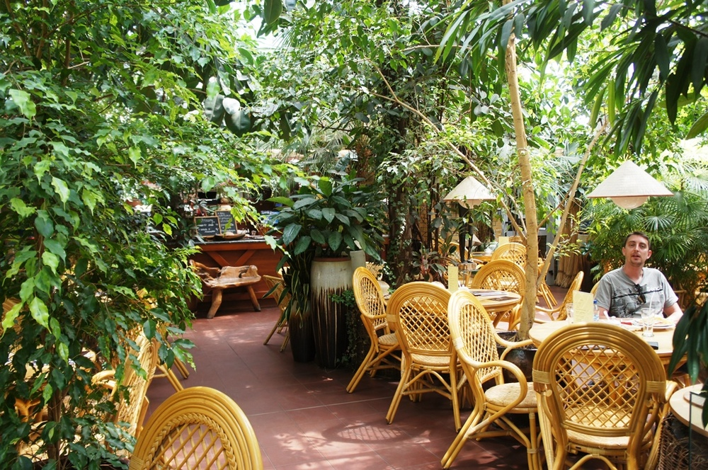 Interior of cafe in Poznan Palm House