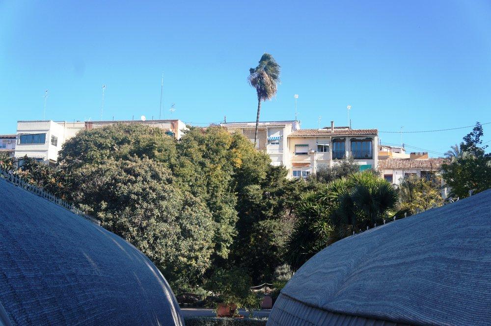 Valencia Botanic Gardens