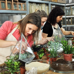 Come and get your hands dirty in our railway arch home. From creating your own miniature world inside our signature glass terrariums to putting together the freshest blooms, we've got a workshop for everyone!