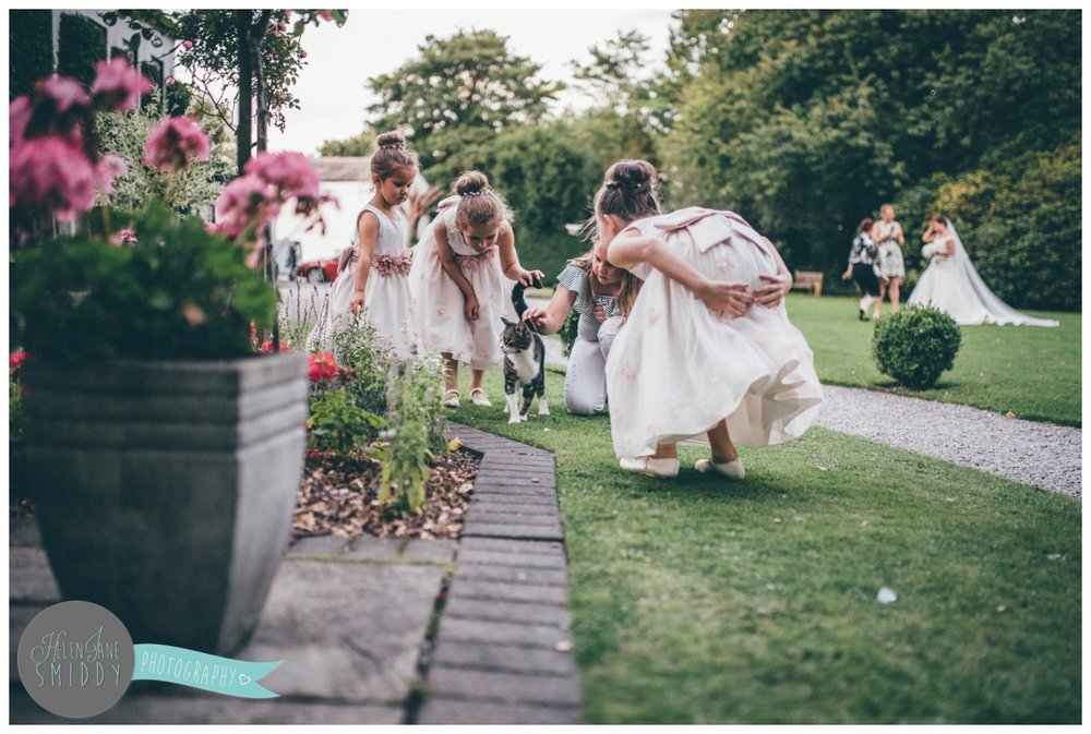 The young wedding guests find a cat to play with at Statham Lodge in Cheshire.