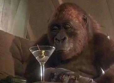 """I love  Congo . "" -Amy the gorilla, star of  Congo"