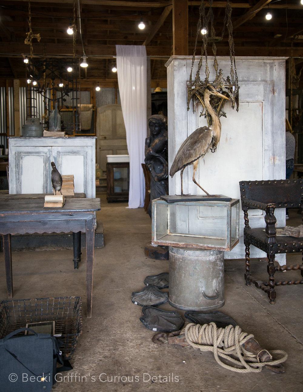 Becki Griffin's Curious Details_Carol Bolton Unloading Sale-4.jpg