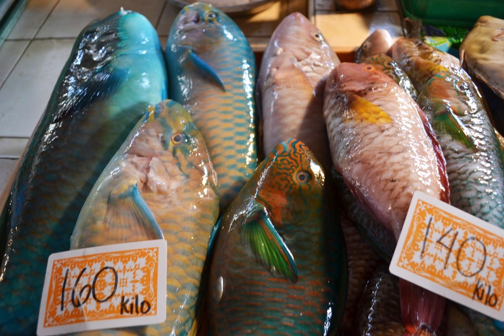 Parrotfish for sale in a Philippines fish market, 2013.