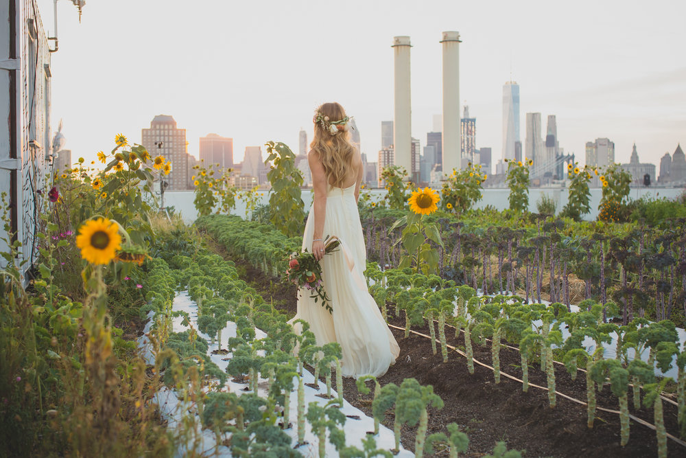 FARM WEDDINGS + REHEARSAL DINNERS -