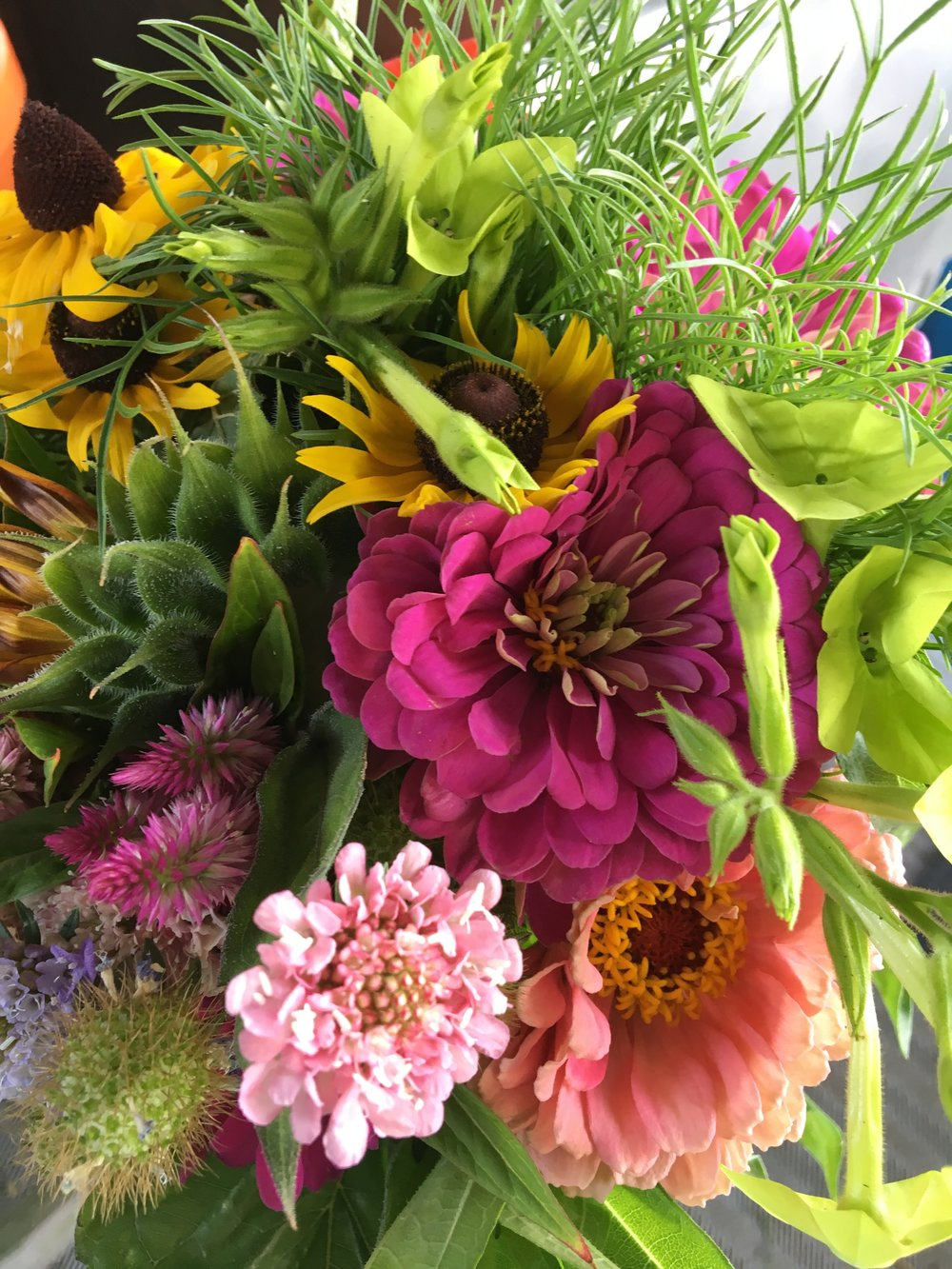Flower CSA Photo July 22 2017.jpg