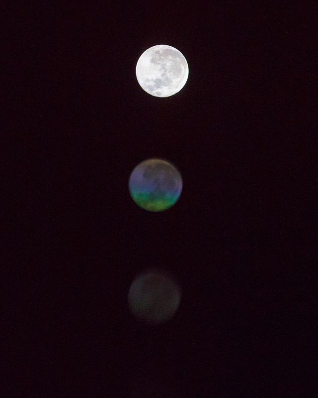 Super Moon Bloom