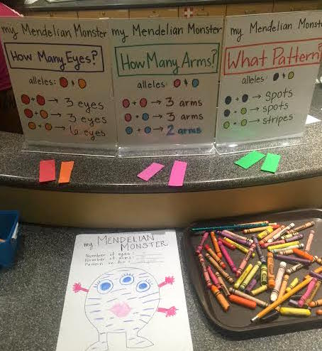 """My Mendelian Monster"" worksheet. Participants draw colored foam genes (colors indicate alleles) from a box to find out the genetic traits to give their monster on the coloring page."