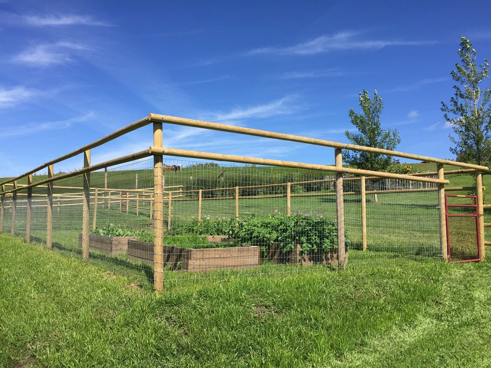 Superbe Deer Fence To Protect The Vegetable Garden Pictured Above.