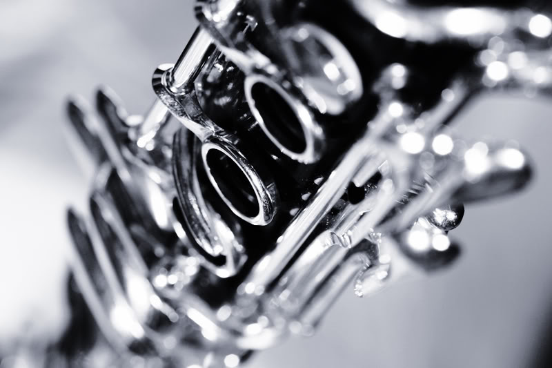 Meet The Musicians Dallas Opera
