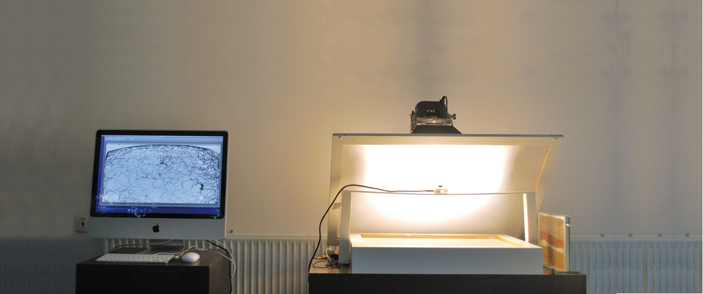 Installation with ant tracking box and simultaneous live stream drawing