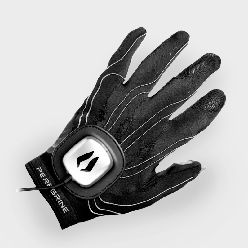 Peregrine Gaming Glove