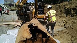 San Carlos UST Removal