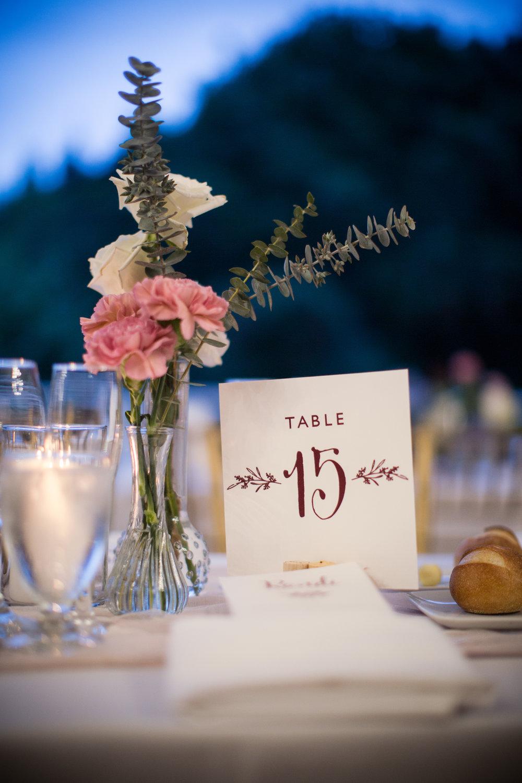 alex_edge_wedding_snug_harbor_ny_4.JPG