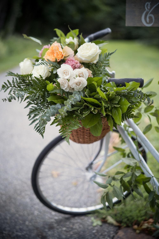 alex_edge_wedding_snug_harbor_ny_3.JPG