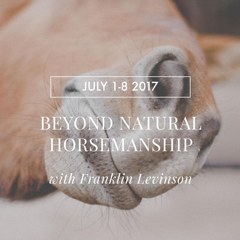 Beyond Natural Horsemanship with Franklin Levinson