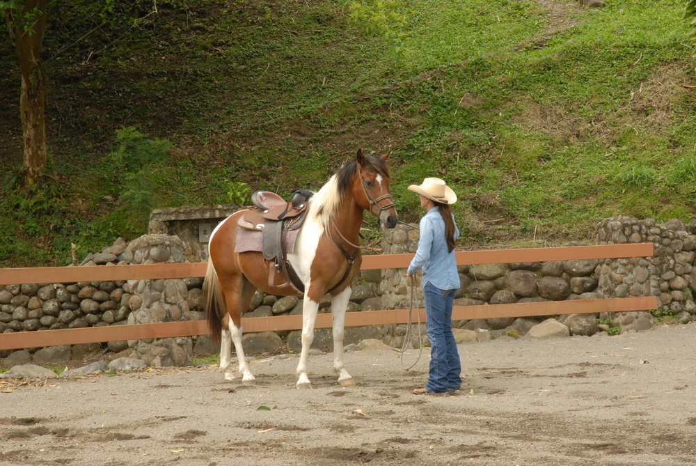 yoga and horse tammy and apache.JPG