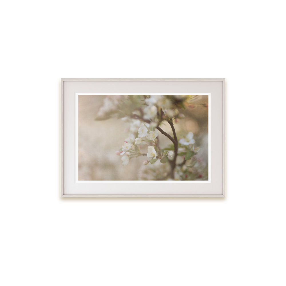 A dreamy floral print in neutral tones