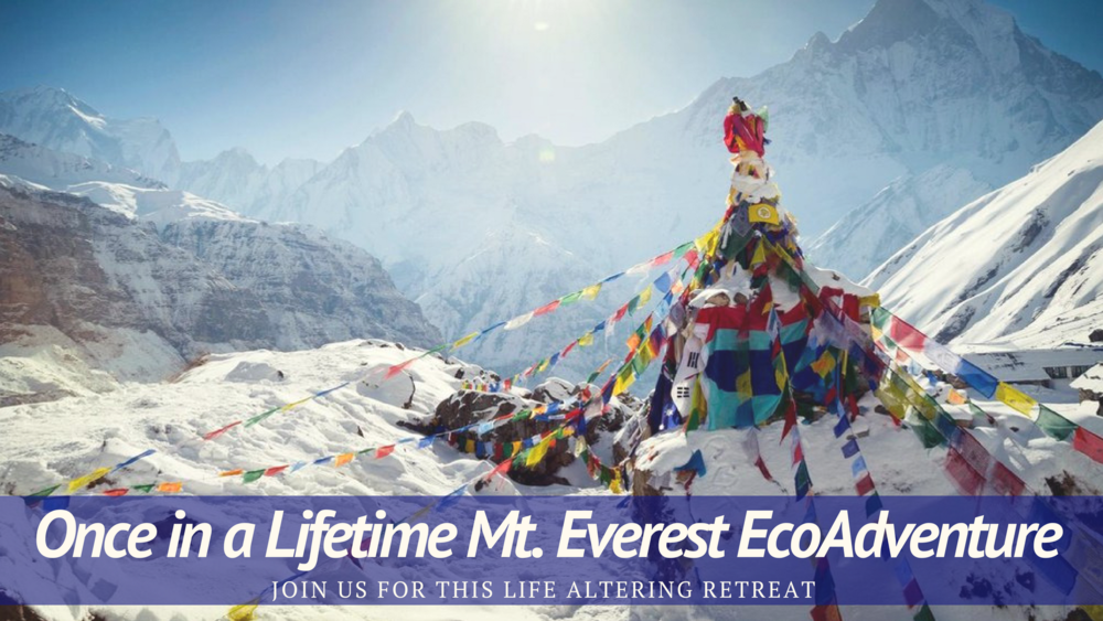 Everest header.png