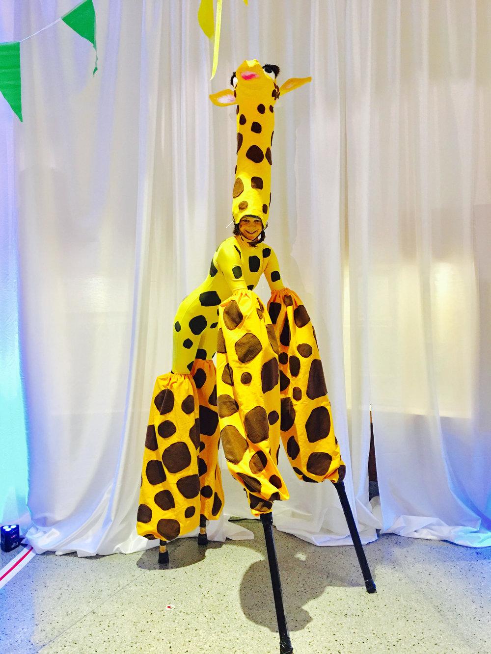 Stilt Giraffe.jpg