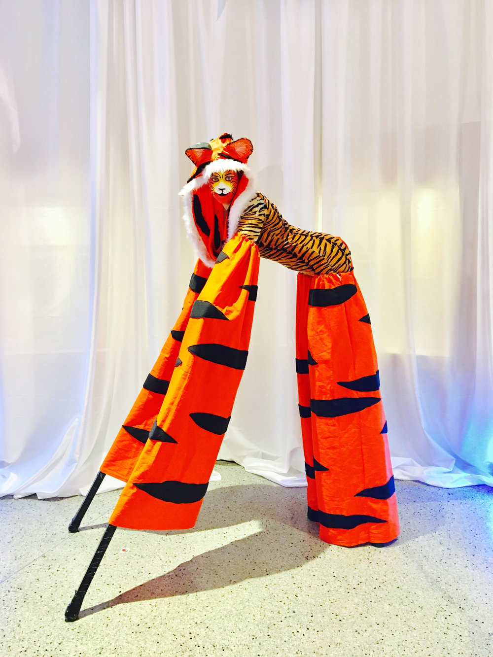 Stilt Tiger.jpg
