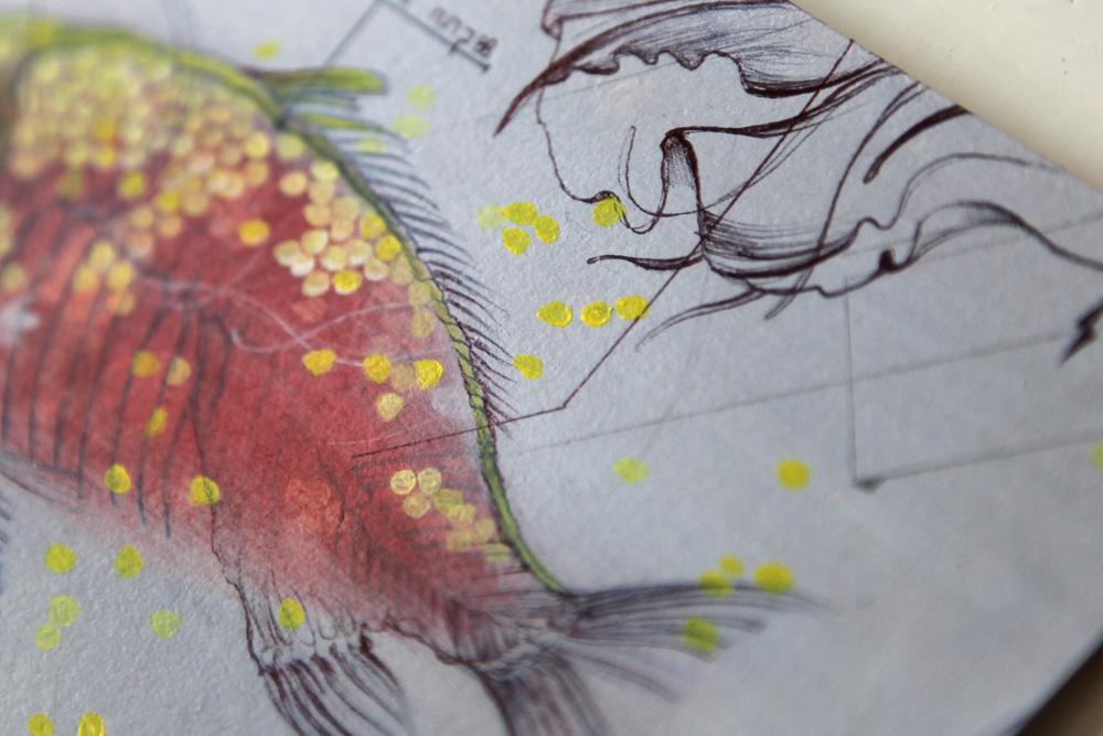 Fish_dots_Marjolein_Caljouw_web.jpg
