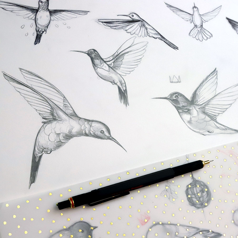 hummingbirds_web.jpg