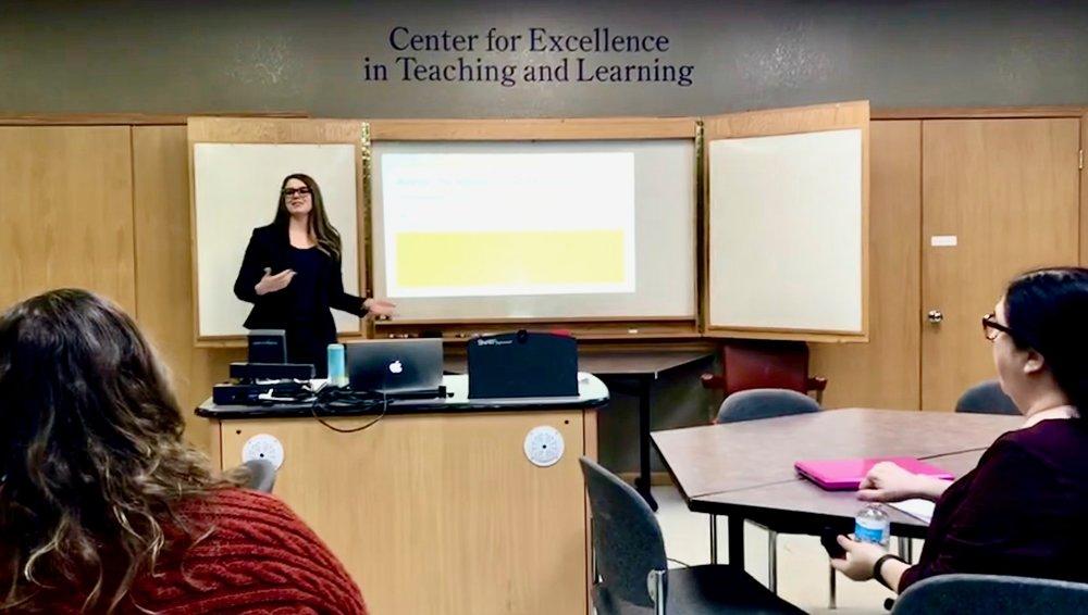 Effective Efficient Professor - Teaching Scholarship
