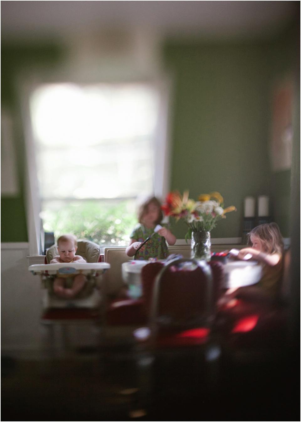 Copy of The Family Historian with Illuminate Classes image © Heather Robinson