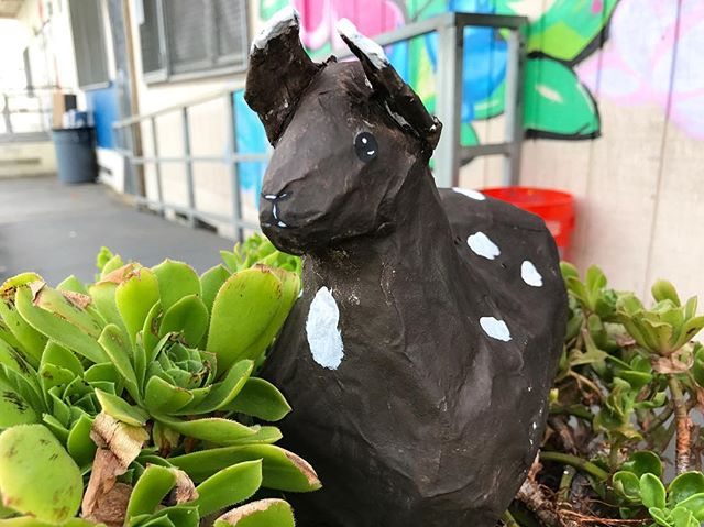 Love when the spotted #llama shows up in the garden for a sunset snack :: #dearfuturela #afterschool  #artclub #arteducation #highschoolart #wegettogive #artstudent #artmentor #artchangeslives #nonprofit #papermache