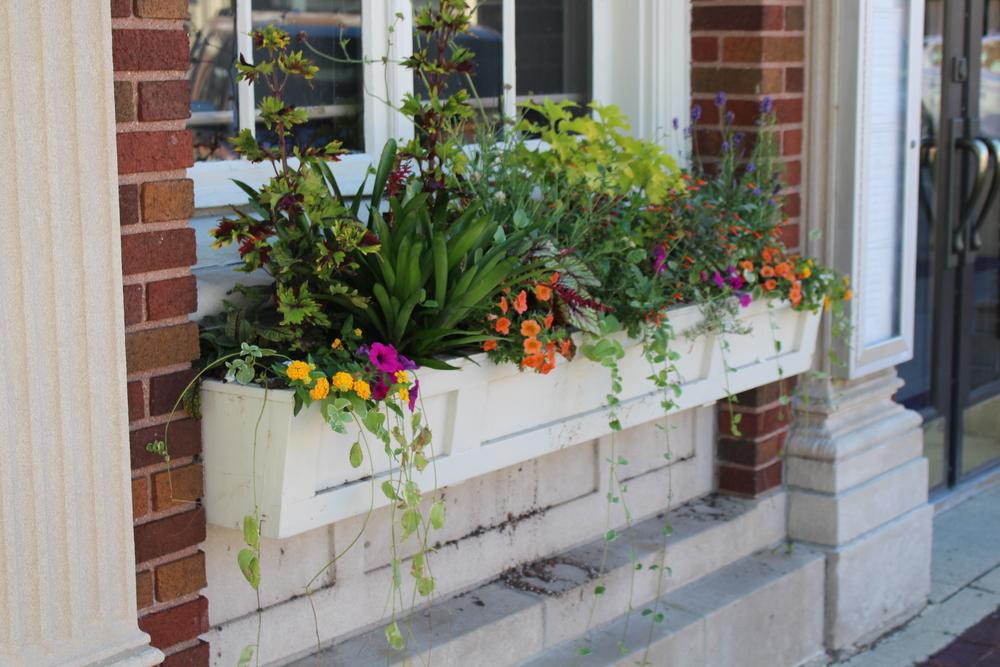 niche flower boxes