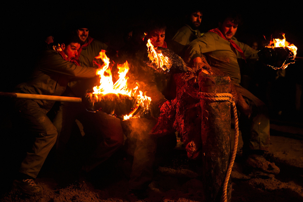 The  bull  tries to  escape  as revellers set on  fire  the  flammable  balls during the ' Toro de Jubilo'  fire bull festival on November 16, 2014 in  Medinaceli , Spain.  Toro de Jubilo , a  Fire Bull festival , is an ancient tradition held annually at midnight in the Spanish town of Medinaceli. The event starts when flammable balls attached to a bull,s horns are set alight. The  animal  is then untied and revellers dodge it until the flammable material is consumed. The body of the animal is covered with mud to protect it from burns.
