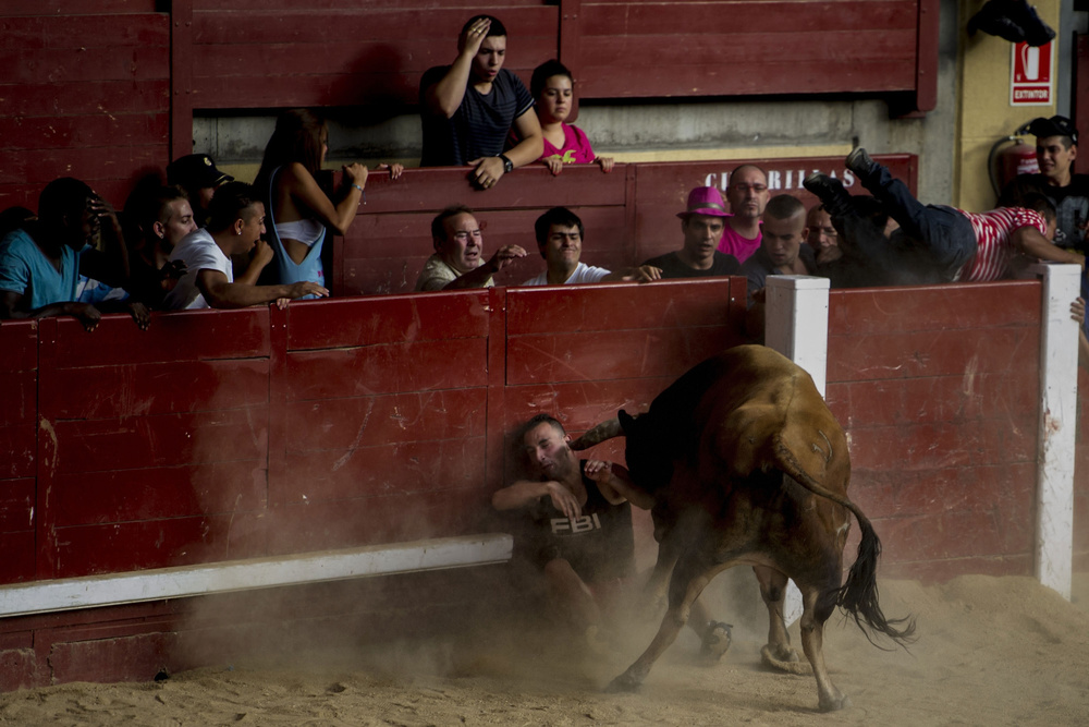 A man is  gore d by a  bull  at La Cubierta  bullring  after the second day of  Leganés Running  of the  Bulls  during  Butarque  Virgin Festivities on August 18, 2012 in Leganés, Spain. The 22 years-old man was seriously injured by a horned of more than 400 kilos from Juan Albarracín Breeder.