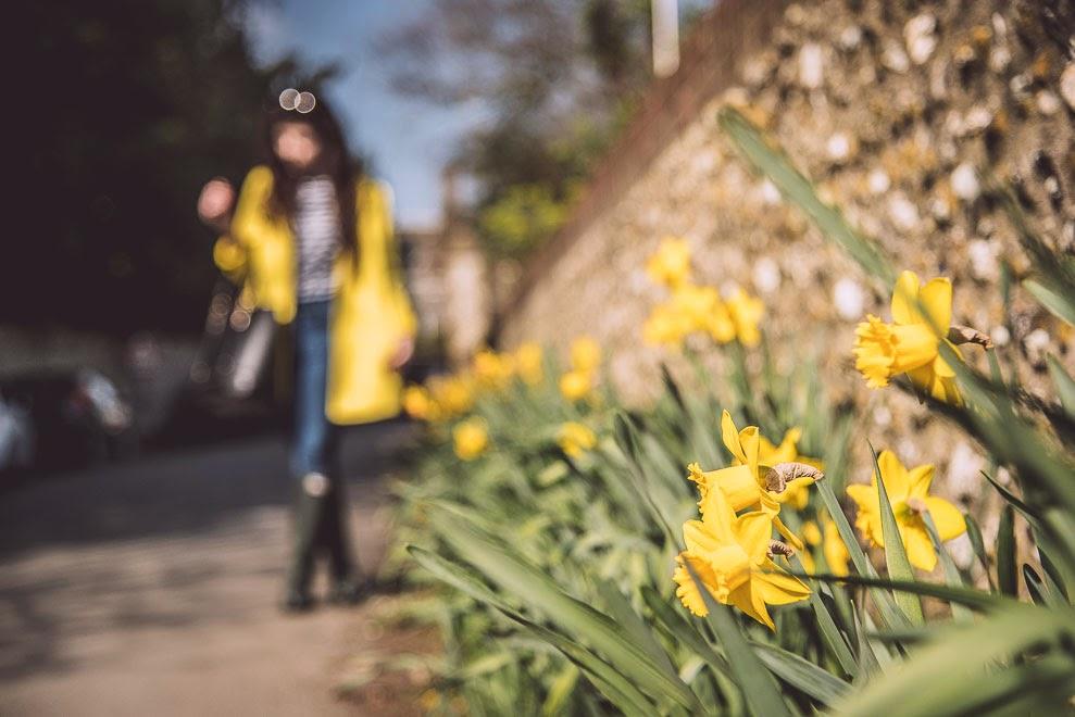 Yellow coat / Style ››