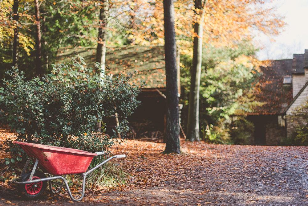 Wilderness Woods, Sussex