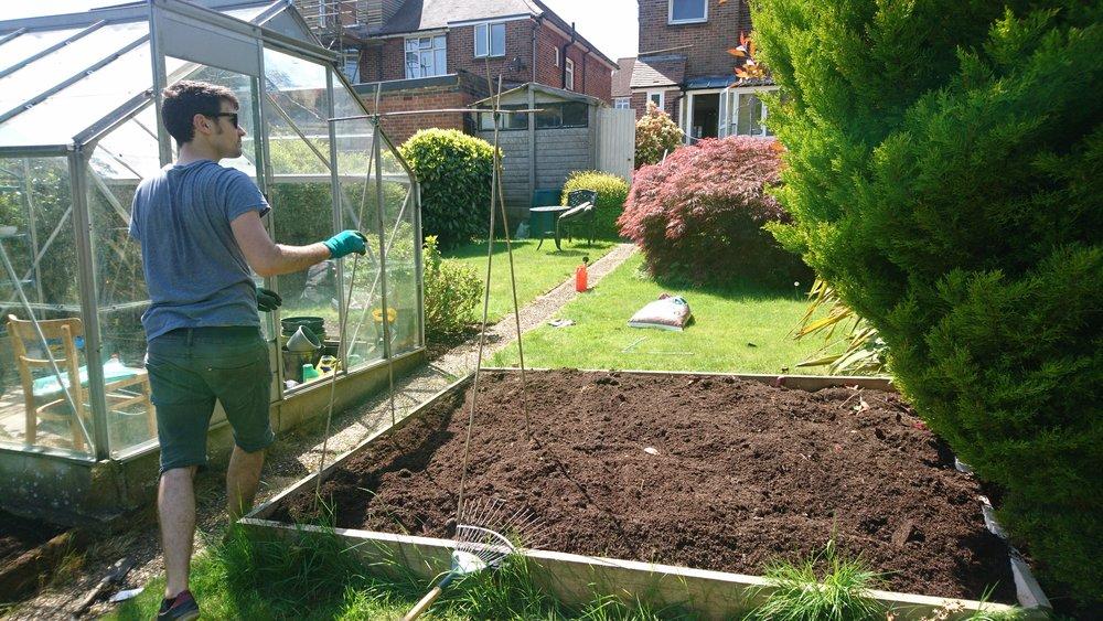 Brighton blogger gardening