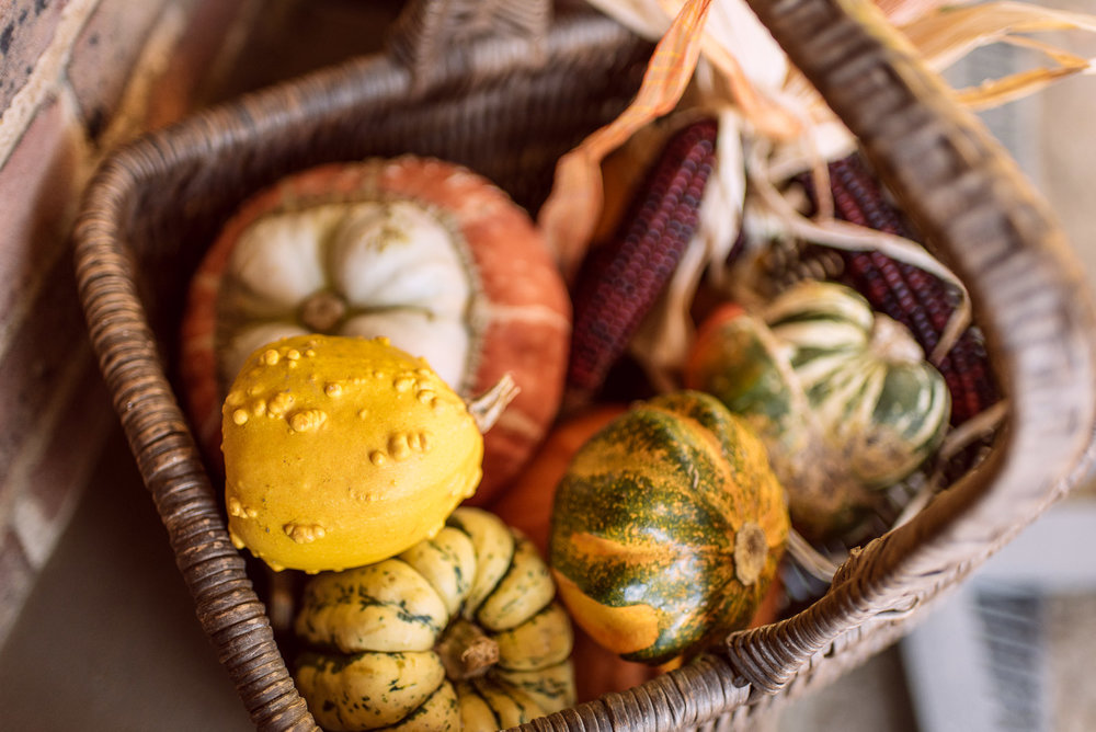 Halloween Gourds in Standen House, National Trust