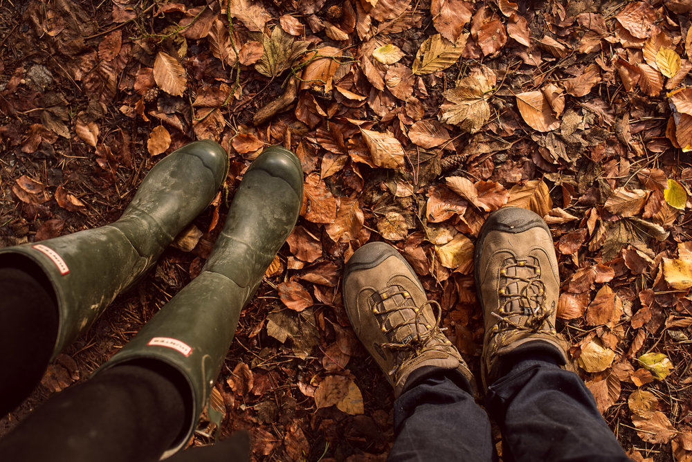 Hunter wellies and a woodland walk, Sussex