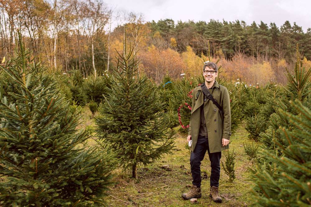 cut your own christmas tree sussex