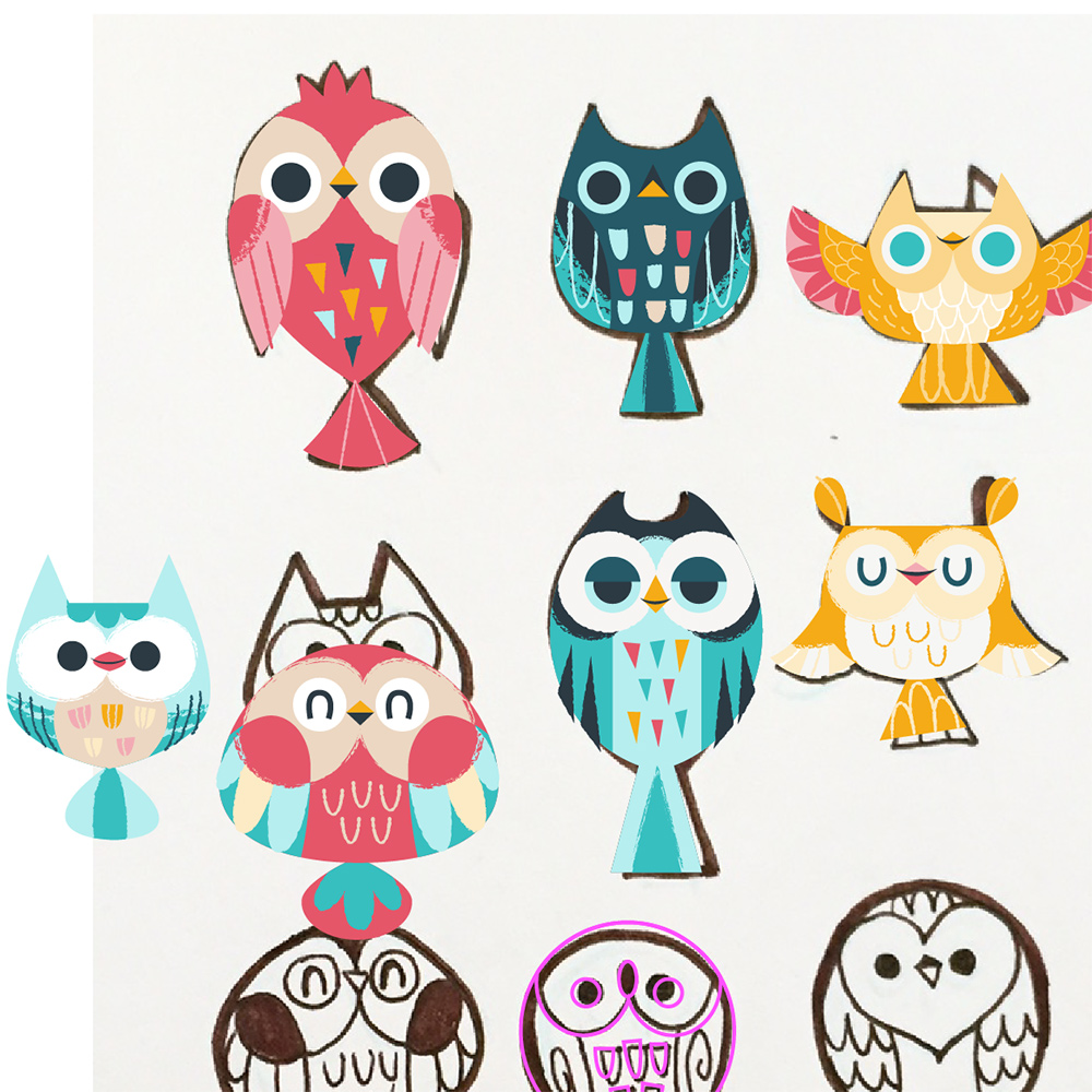 Owl sketches being digitized